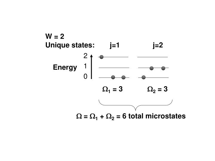 W = 2