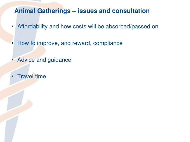 Animal Gatherings – issues and consultation