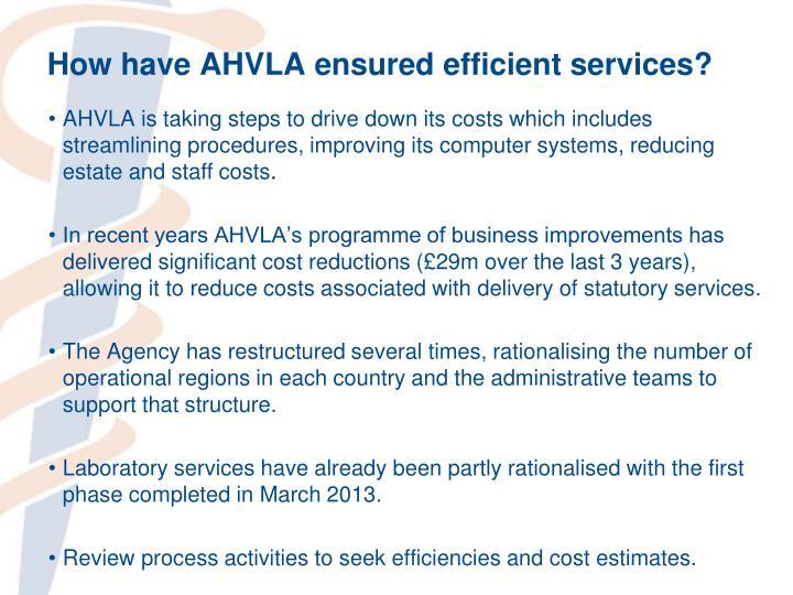 How have AHVLA ensured efficient services?