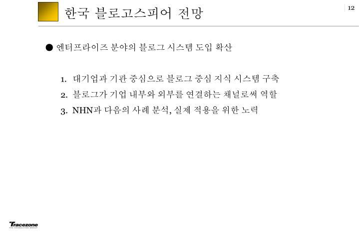 한국 블로고스피어 전망