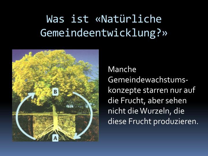 Was ist «Natürliche Gemeindeentwicklung?»