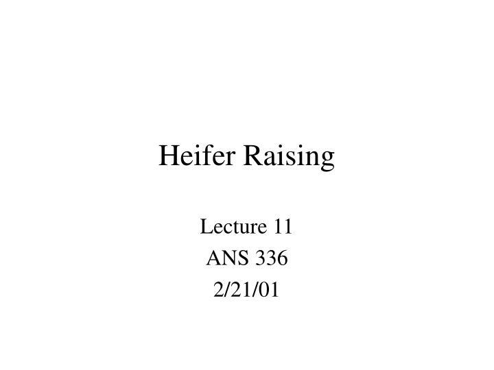 Heifer Raising