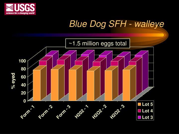 Blue Dog SFH - walleye