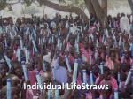 individual lifestraws