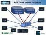 ngf global homes common