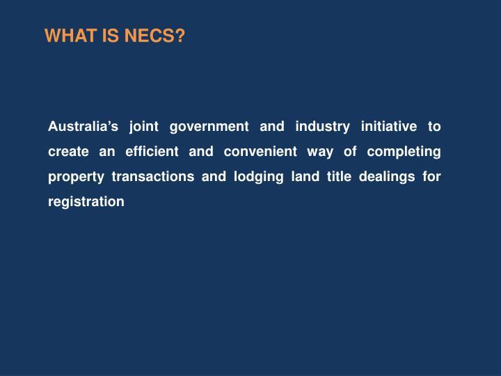 WHAT IS NECS?
