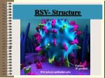 rsv structure