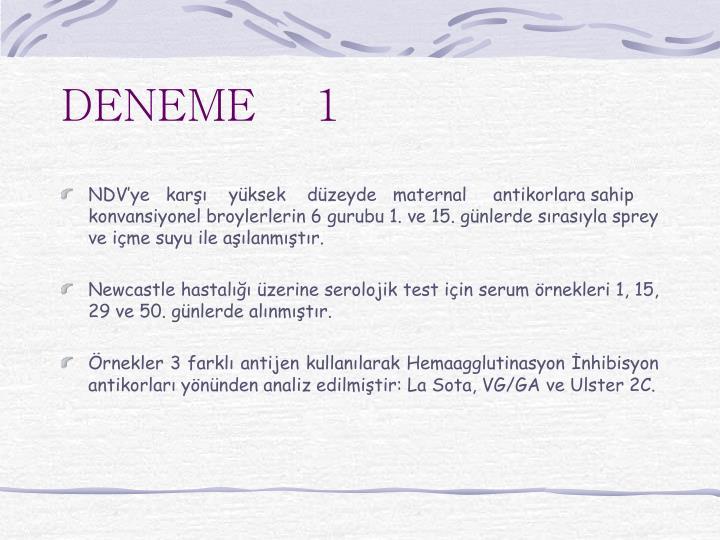 DENEME    1