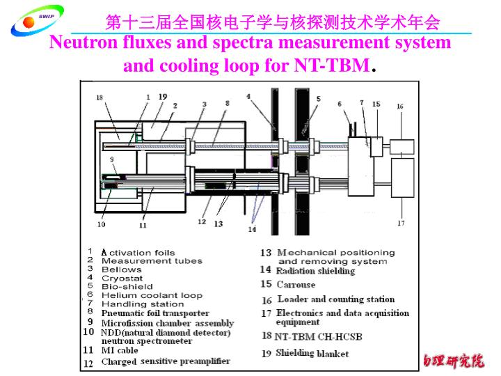 Neutron fluxes and spectra measurement system and cooling loop for NT-TBM