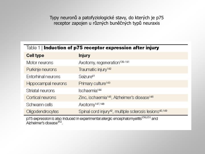 Typy neuronů a patofyziologické stavy, do kterých je p75 receptor zapojen u různých buněčných typů neuraxis