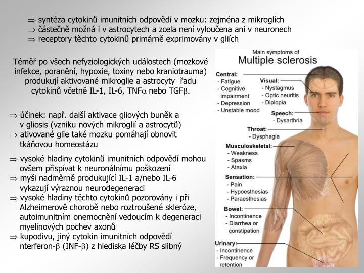syntéza cytokinů imunitních odpovědí v mozku: zejména z mikroglích