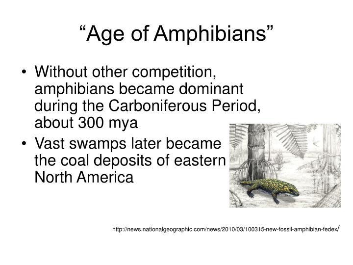 """Age of Amphibians"""