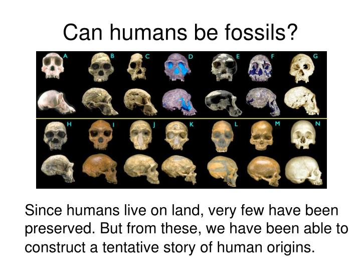 Can humans be fossils?