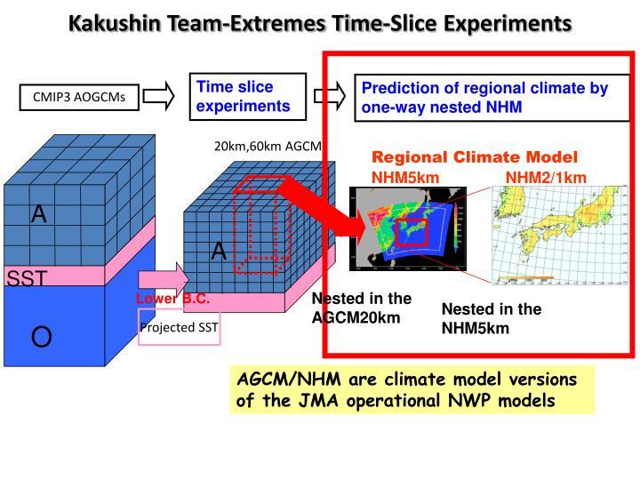 Kakushin Team-Extremes Time-Slice Experiments