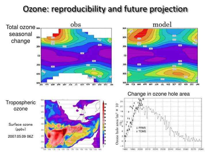 Ozone: reproducibility and future projection