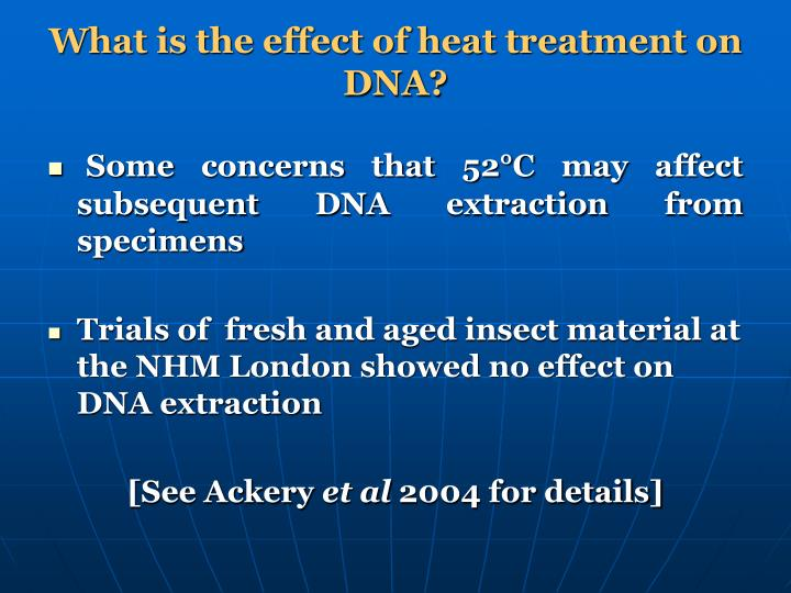What is the effect of heat treatment on DNA?