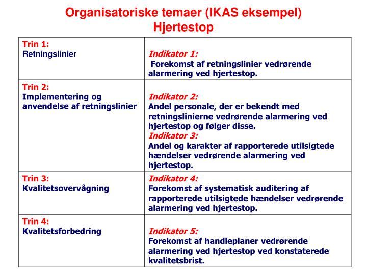 Organisatoriske temaer (IKAS eksempel)