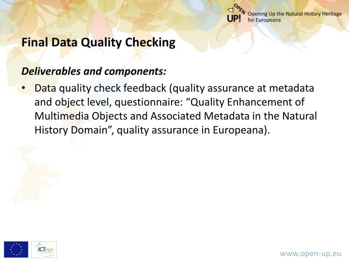 Final Data Quality Checking
