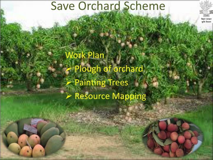 Save Orchard Scheme
