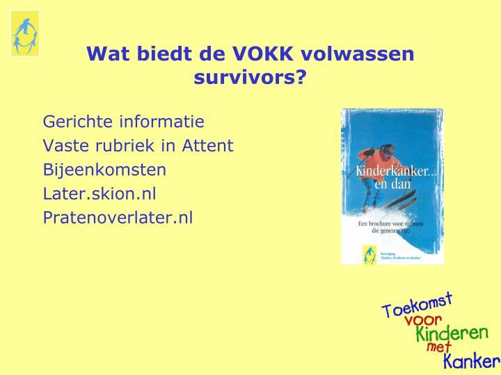 Wat biedt de VOKK volwassen survivors?