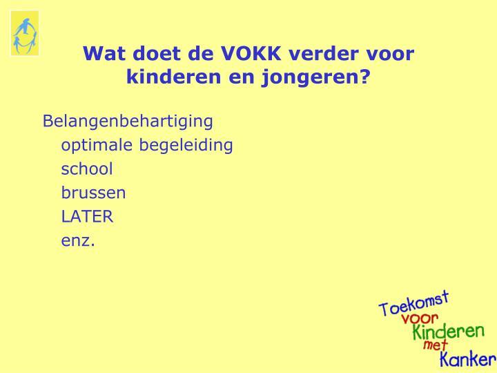 Wat doet de VOKK verder voor kinderen en jongeren?