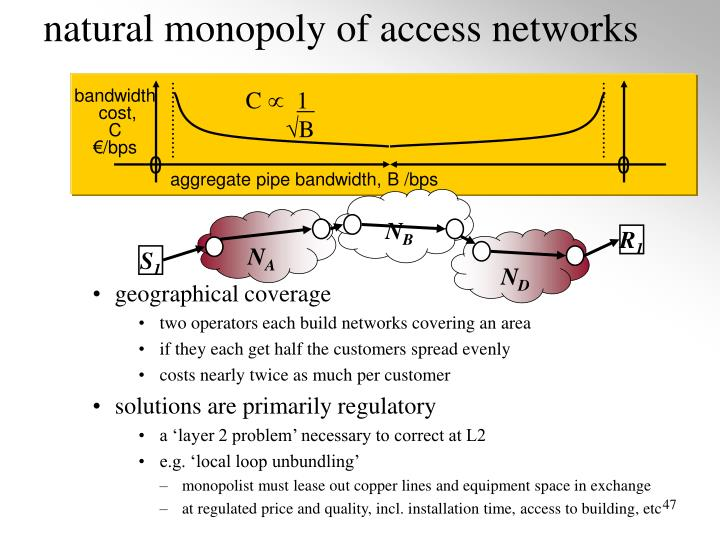 natural monopoly of access networks