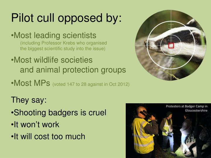 Pilot cull opposed by: