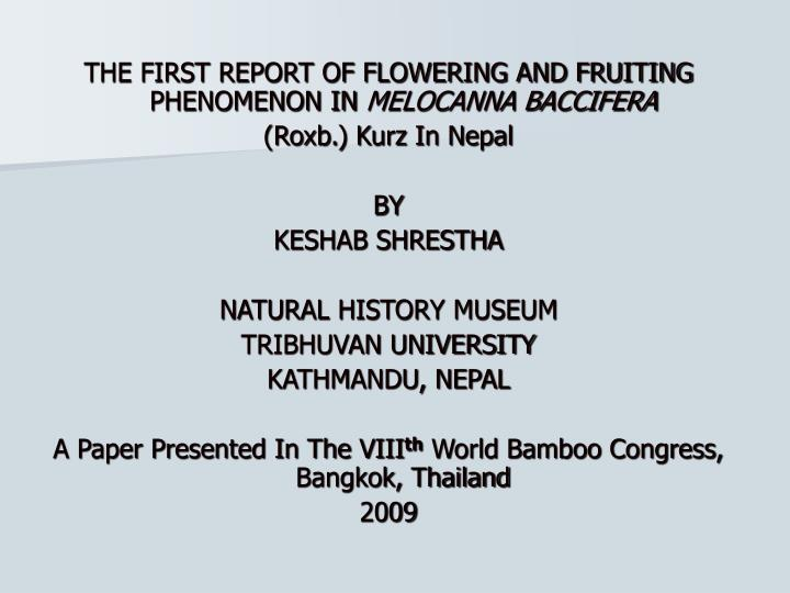THE FIRST REPORT OF FLOWERING AND FRUITING PHENOMENON IN