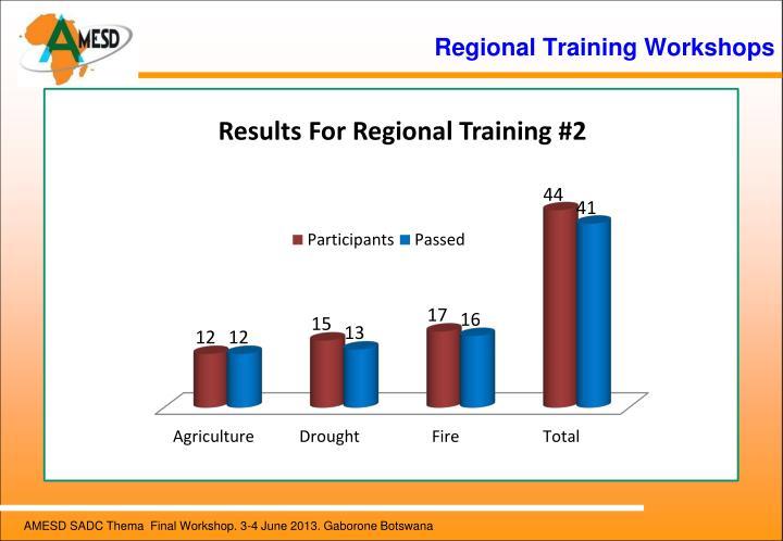 Regional Training Workshops
