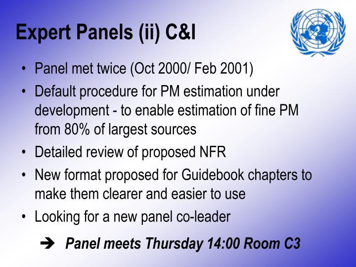 Expert Panels (ii) C&I