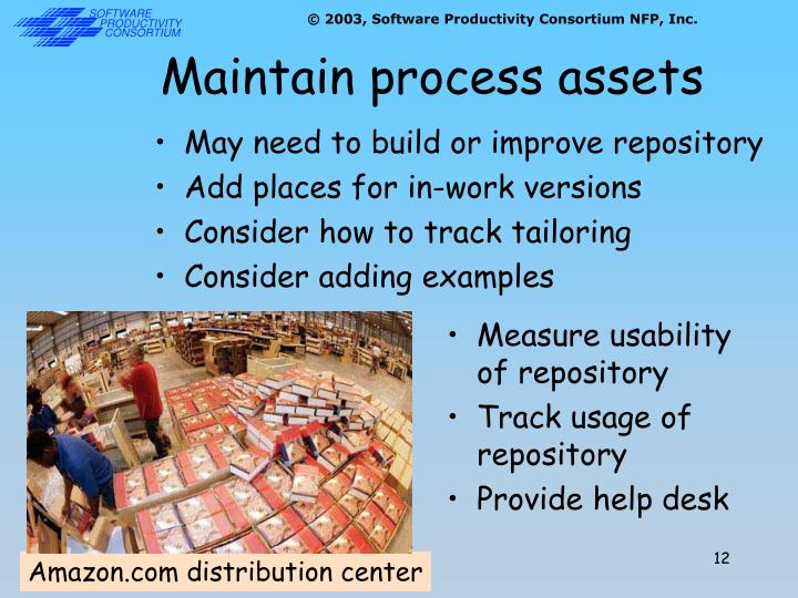 Maintain process assets