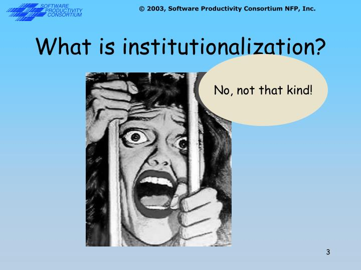 What is institutionalization