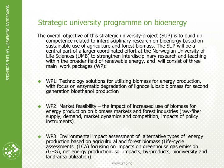 Strategic university programme on bioenergy
