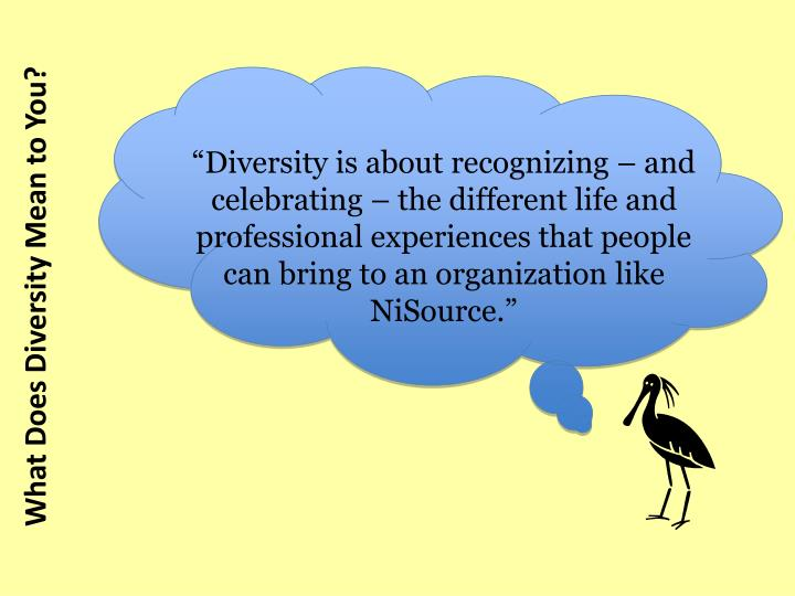 """Diversity is about recognizing – and celebrating – the different life and professional experiences that people can bring to an organization like NiSource."""