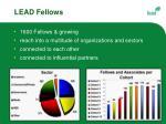 lead fellows