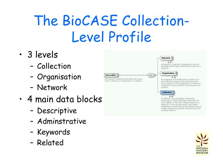 The BioCASE Collection-Level Profile