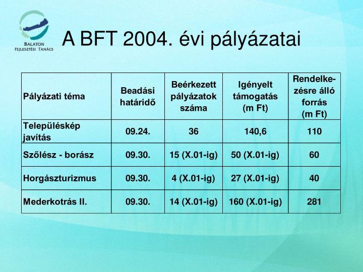A BFT 2004. évi pályázatai