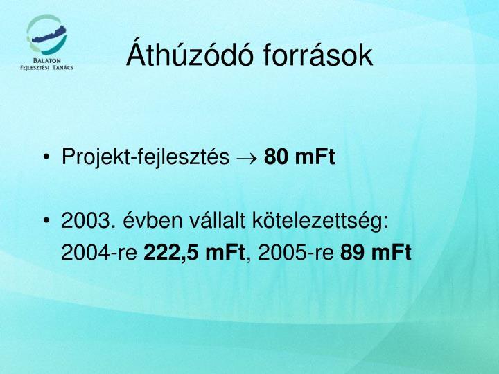 Projekt-fejlesztés