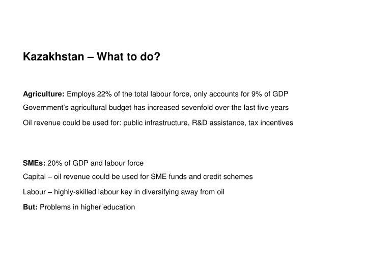 Kazakhstan – What to do?