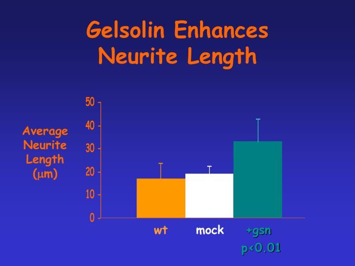 Gelsolin Enhances