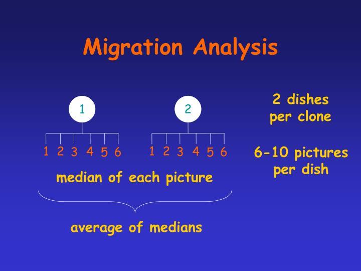 Migration Analysis