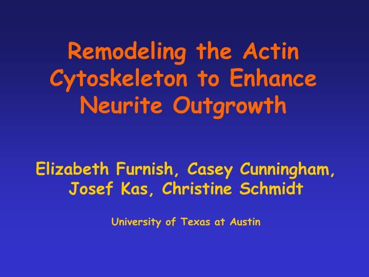 remodeling the actin cytoskeleton to enhance neurite outgrowth