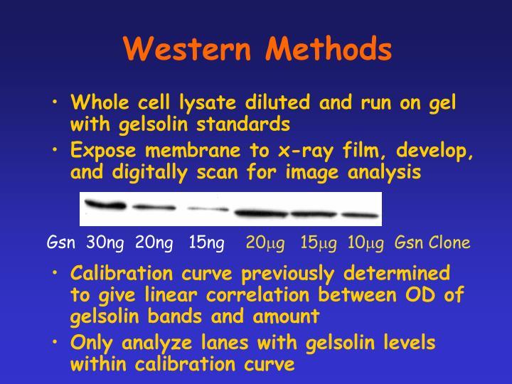 Western Methods