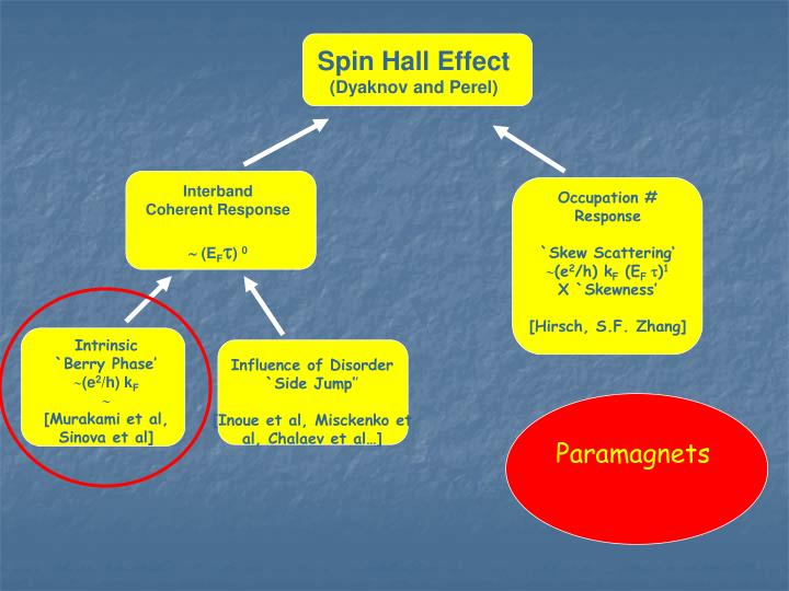 Spin Hall Effect