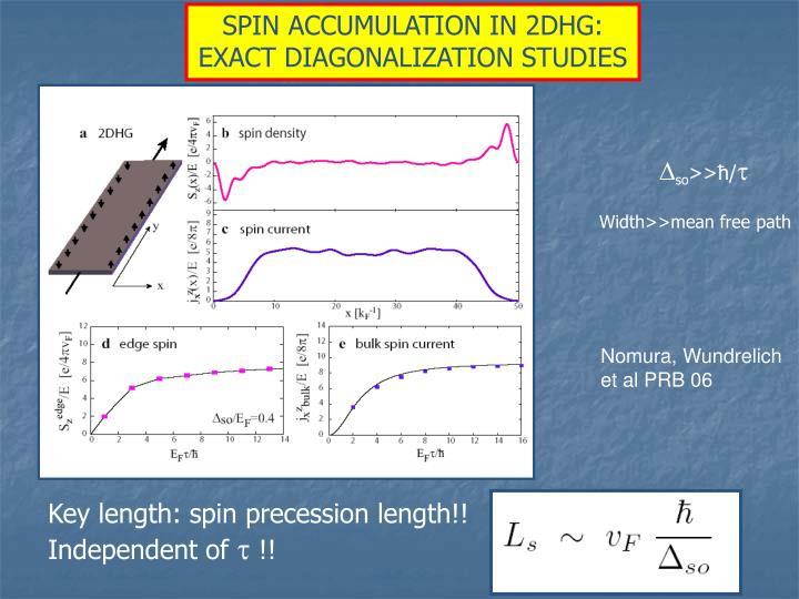 SPIN ACCUMULATION IN 2DHG: EXACT DIAGONALIZATION STUDIES