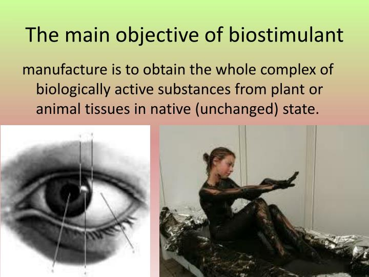 The main objective of biostimulant