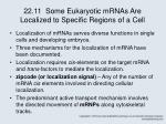 22 11 some eukaryotic mrnas are localized to specific regions of a cell
