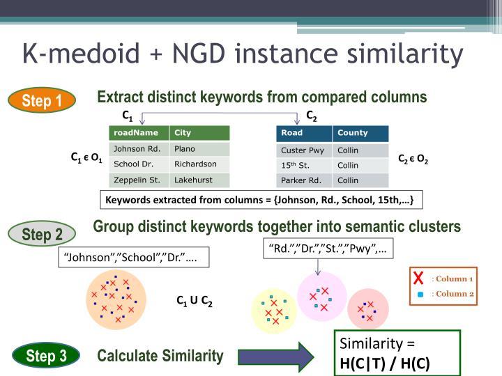 K-medoid + NGD instance similarity