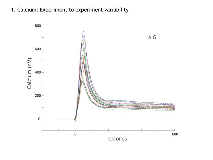 1. Calcium: Experiment to experiment variability