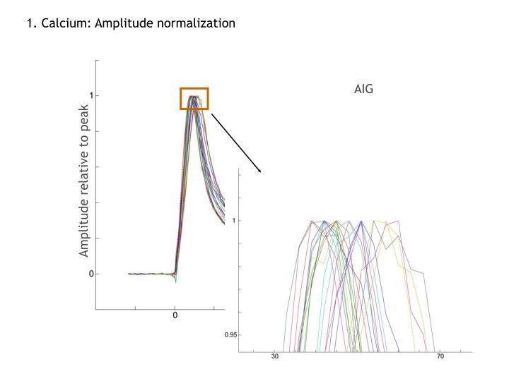 1. Calcium: Amplitude normalization